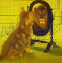 netinvestmen's Photo