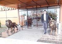 Sav Gheorghe's Photo